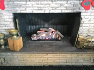 Empire 30 Inch Vent Free Ponderosa Log Set With Slope Glaze Burner