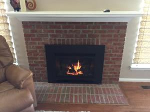 Travis Radiant Plus Large DV Gas Insert