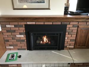 Avalon Radiant Plus Small Gas Insert